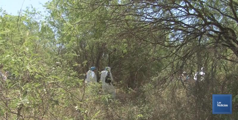 Colectivo de Madres Buscadoras de Sonora se reunirán con titular de Seguridad en Sonora