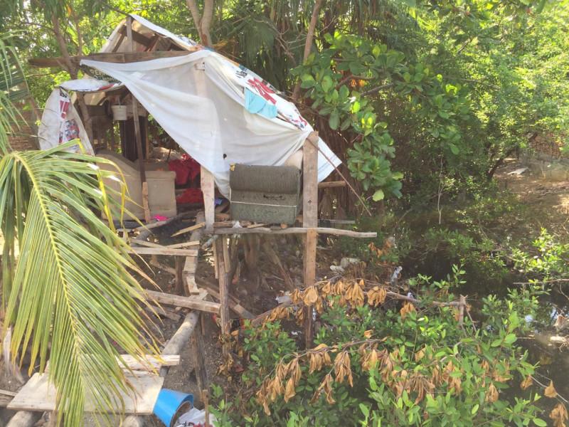 Construyen casita en árbol pegado a canal pluvial