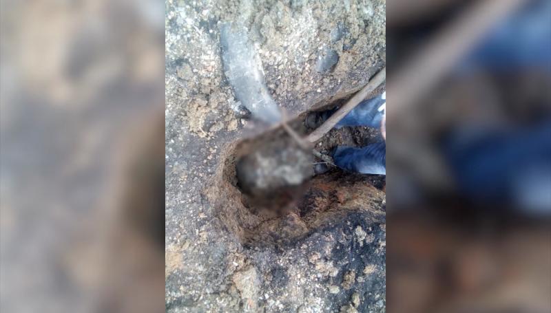 Encuentran restos óseos cerca del autódromo