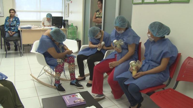 El 20% de los nacimientos del Hospital de la Mujer ingresan a terapia intensiva