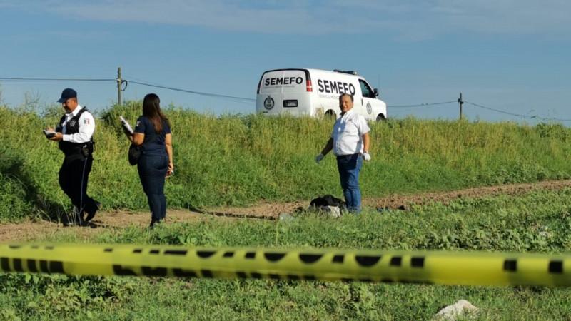 Muere atropellado jornalero agrícola