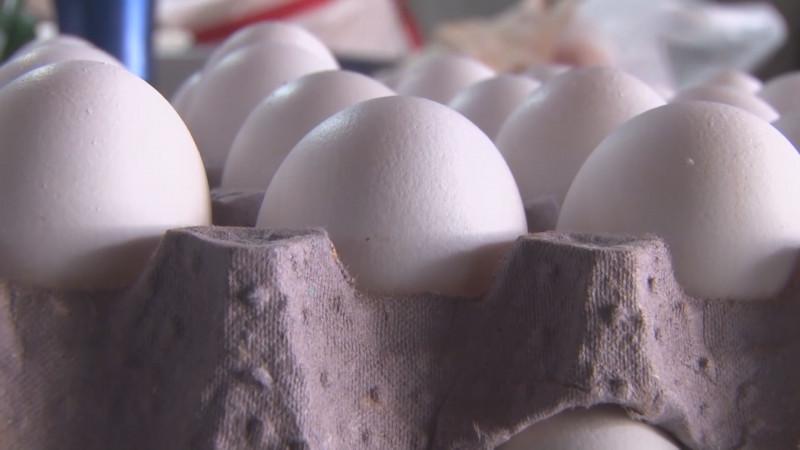 Un huevo diario no incrementa el riesgo de enfermedades cardiovasculares