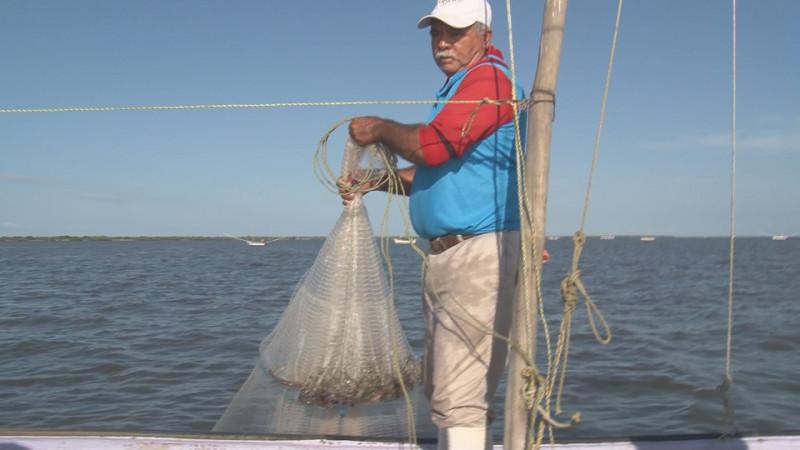 Capturas promedio de 80 y 100 kilogramos de camarón por embarcación en el primer día de pesca