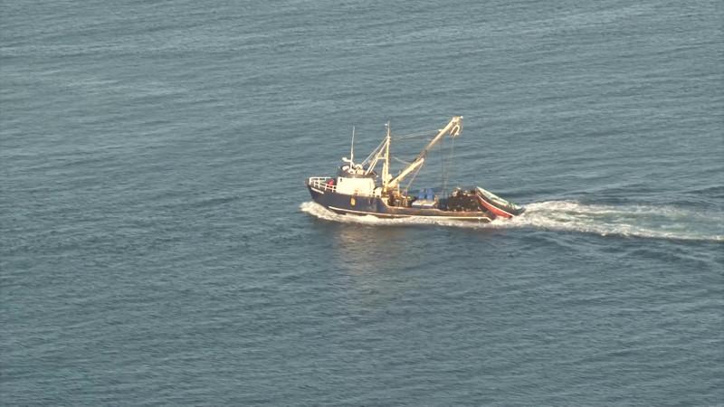 Modifican Leyes para favorecer en apoyos al sector pesquero