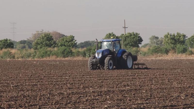 Superficies de siembra dependerá de los volúmenes de agua que asigne la CONAGUA