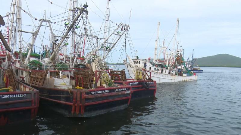 Cientos de pescadores resguardados