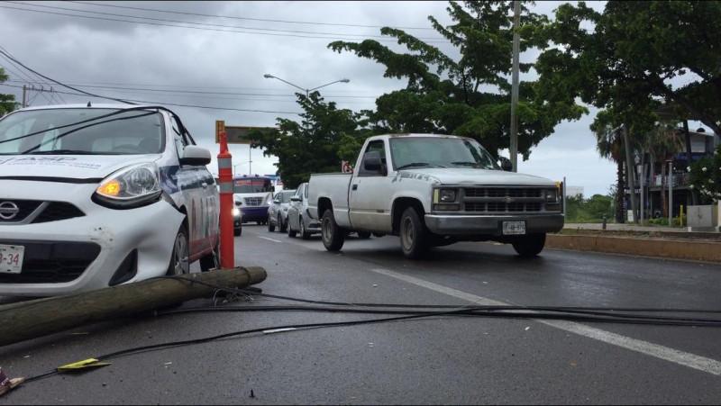 Poste telefónico y cableado cae sobre automóvil