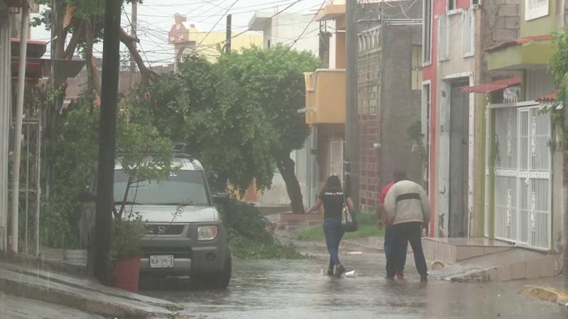 Árboles caídos y destrozos en calles