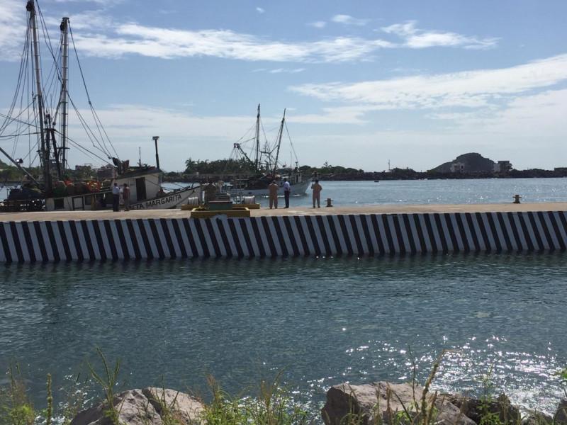 Embarcaciones camaroneras zarpan a altamar, luego de la tormenta