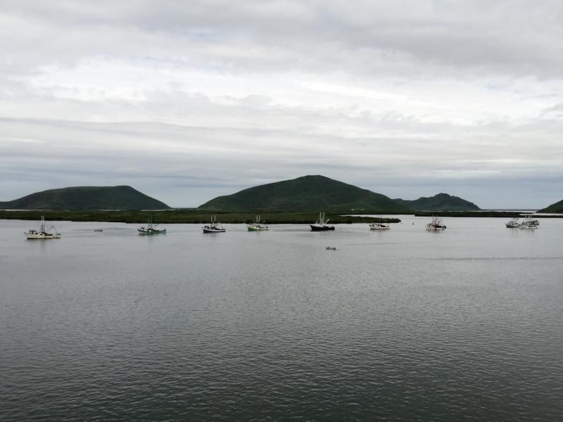 Casi 800 barcos zarparon desde Topolobampo