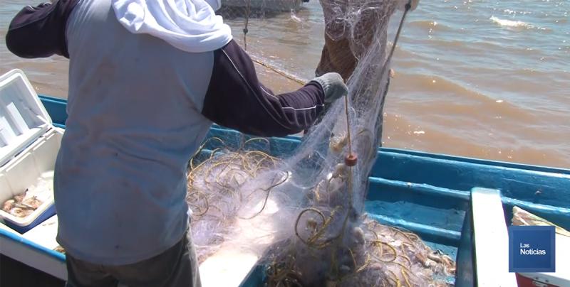 Seguro de Pescadores podrían iniciar en octubre