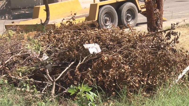 parque de villas del Río enmontado y acumulador de basura