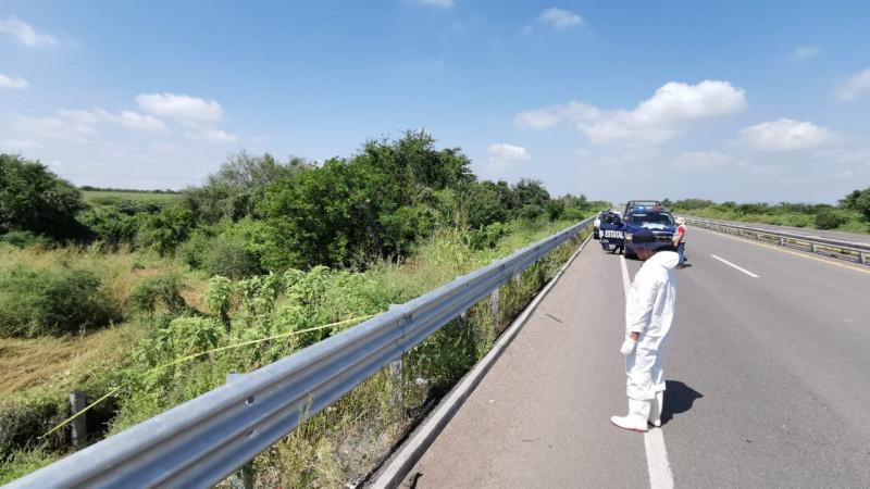 Encuentran restos óseos a un costado de la carretera México 15