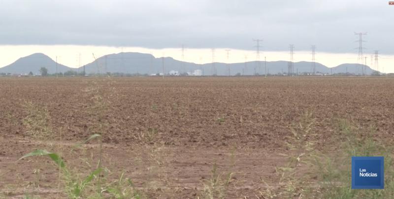 Labores de preparación de terreno para siembra, tienen serio retraso