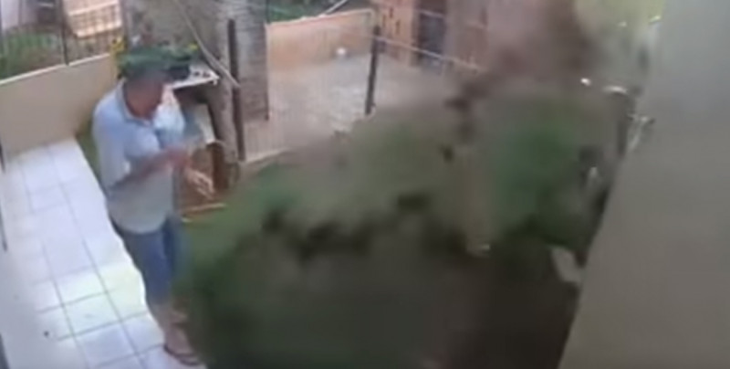 VIDEO: Hombre hace explotar su jardín al tratar de eliminar un nido de cucarachas