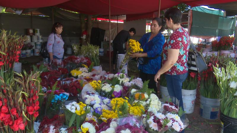 Regular venta de flores en dia de muertos