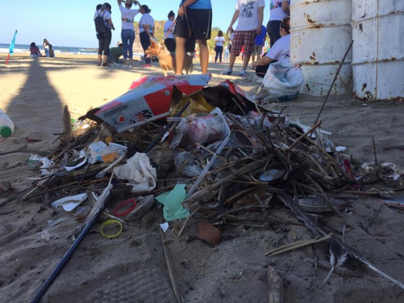 Limpian playas y retiran miles de colillas de cigarro