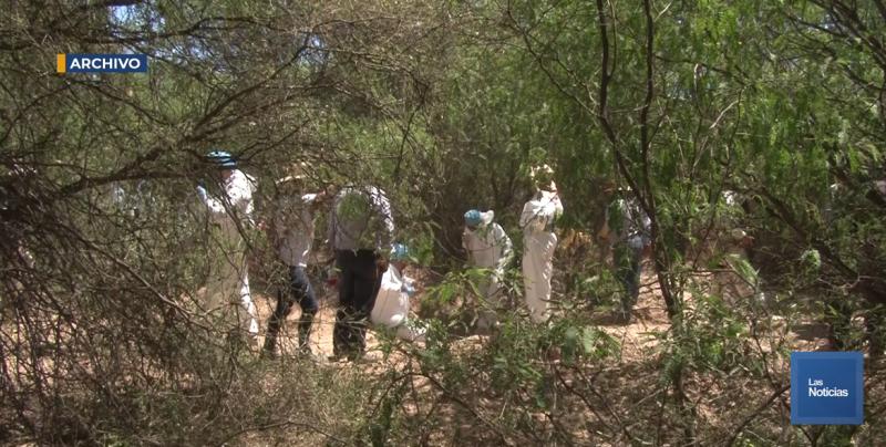 """""""Pensé que me iban a matar"""", Cecilia Flores, líder de Madres Buscadoras de Sonora"""