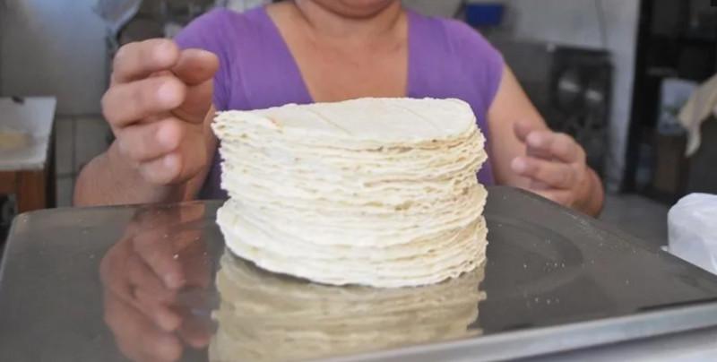 Precio de la tortilla se podría disparar si se aprueba la ley contra maíz híbrido
