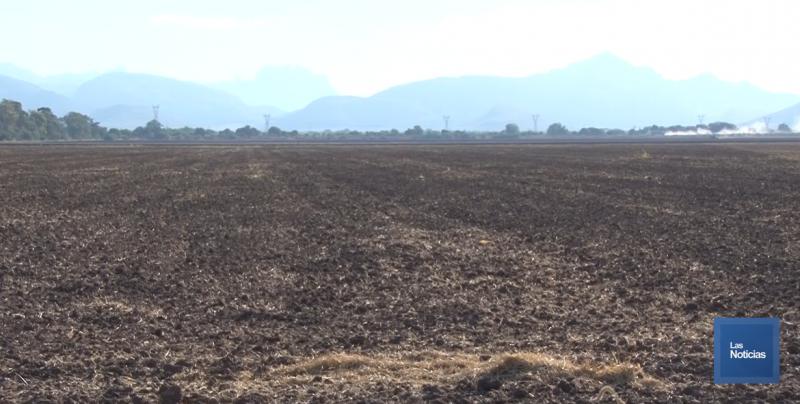 Crítica la situación en el Valle del Mayo para la agricultura