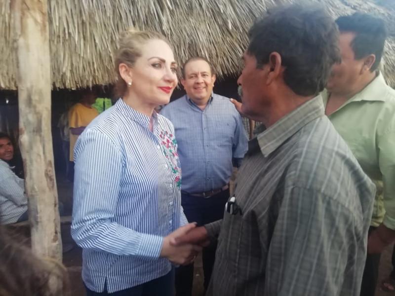 Levantan cerco sanitario tras mortandad de peces en el sur de Sinaloa