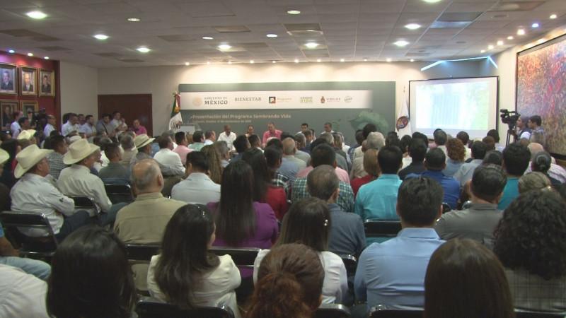 Sinaloa entrará al Programa Sembrando Vida a partir del 2020