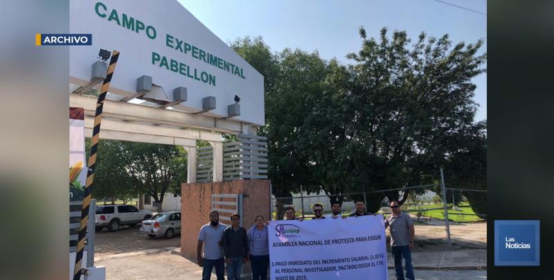 De estallar la huelga se afectarían ocho proyectos de investigación en el Valle del Yaqui