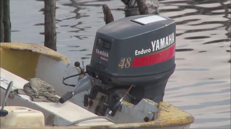 Hunde la bancada Morenista al sector pesquero del país con la reducción presupuestal