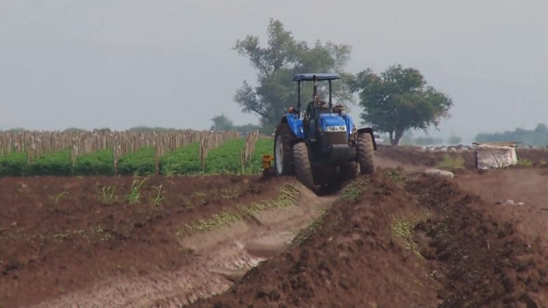 Piden organizaciones agrícolas reasignar mil millones de pesos en el presupuesto estatal