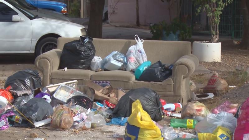 Ya esta regularizados el servicio de recolección de basura
