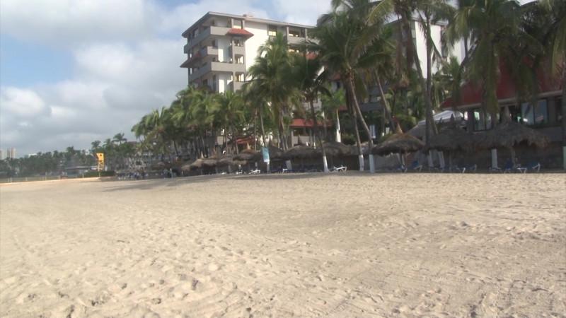 Pelea Sinaloa la sede 2020 del Encuentro Nacional de Playas Limpias