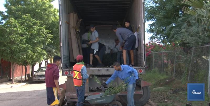 Eco Jóvenes por Sonora, recibieron 16 mil árboles