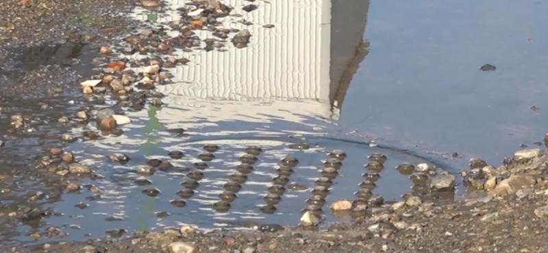 Aguas lamosas preocupa a vecinos de colonia Hogar del Pescador