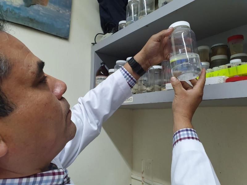 Coadyuva especialista en la prevención y erradicación de la lepra en Sinaloa