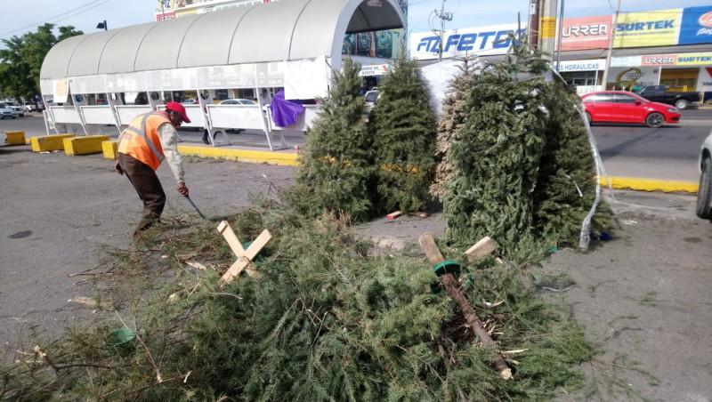 Deposita tu árbol navideño en un centro de acopio