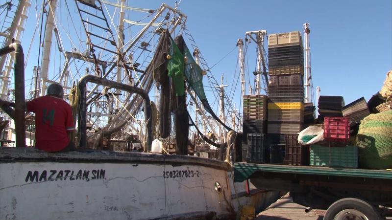 Se amarra mas del 90% de la flota pesquera