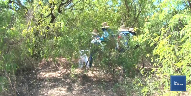 Madres Buscadoras inician el 2020 con el pié derecho, encuentran cuerpo en Hermosillo