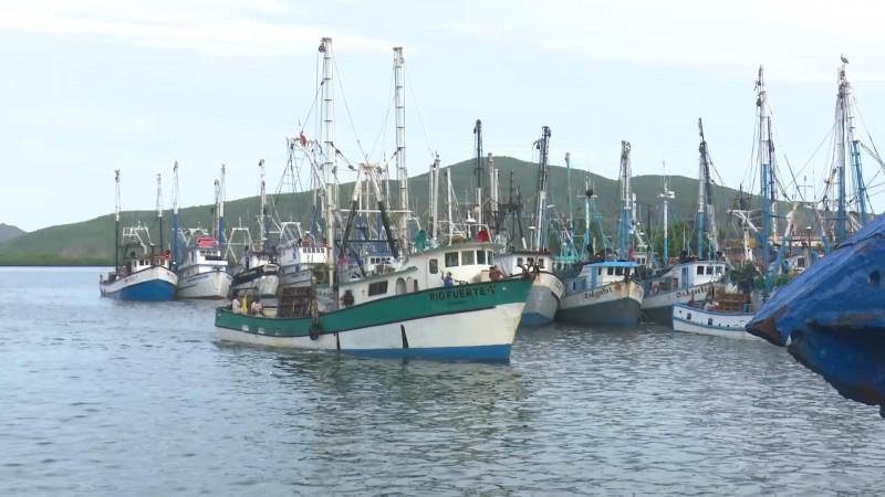 Piden pescadores mejor distribución de los apoyos