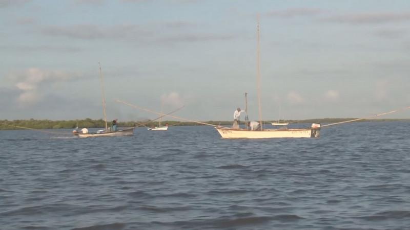 Los recursos a Pesca y Acuacultura serán ejercidos de manera transparente