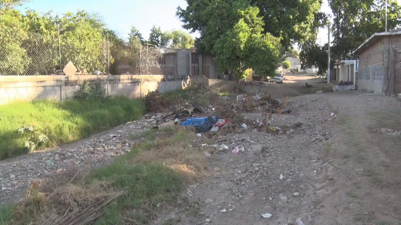 Cerrado el acceso de la calle por basura