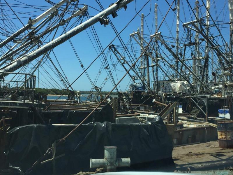Desempleo y crítica situación enfrentan pescadores en el 2020