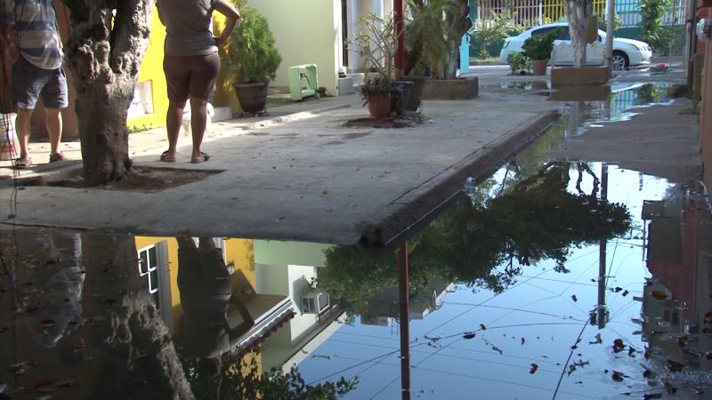 Problemas de salud presentan vecinos del infonavit Alarcón por fuga de aguas negras