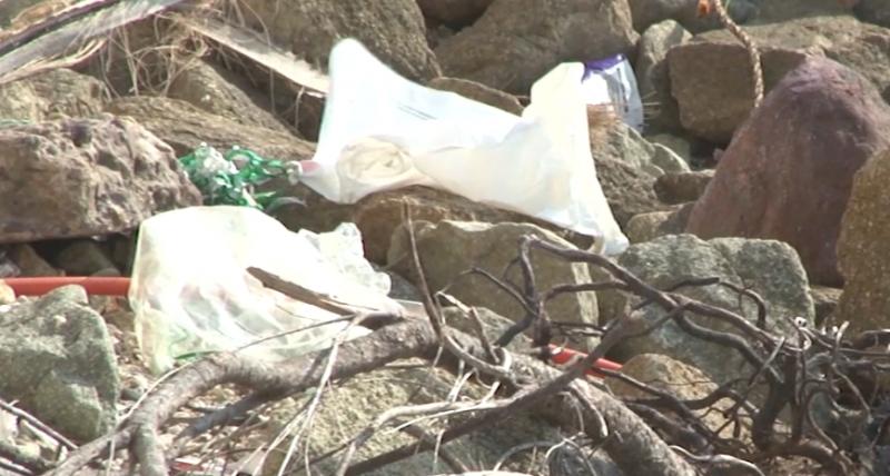 Pide CONSELVA a Diputados la aprobación de iniciativa contra plásticos
