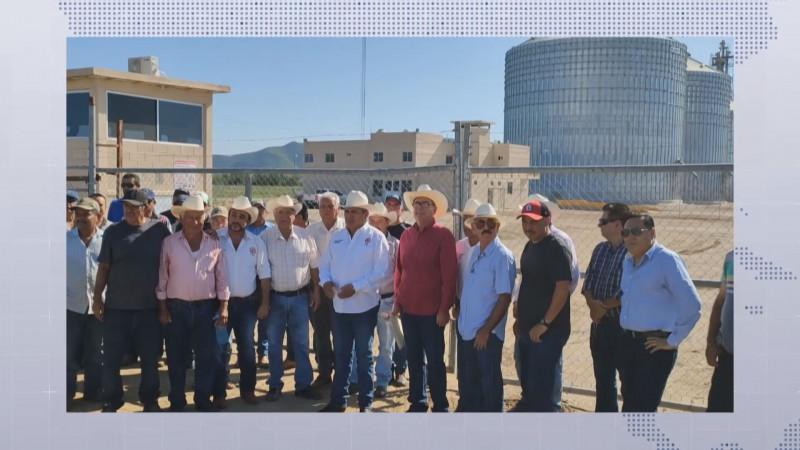 Exige Gobierno del Estado que Multigranos de Sinaloa pague las cosechas que entregaron los productores del Carrizo