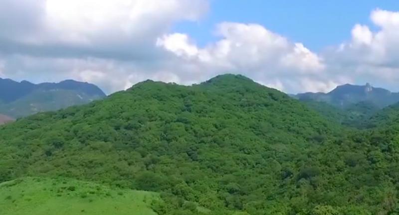Recibe CONSELVA donativo que será destinado a reforestación