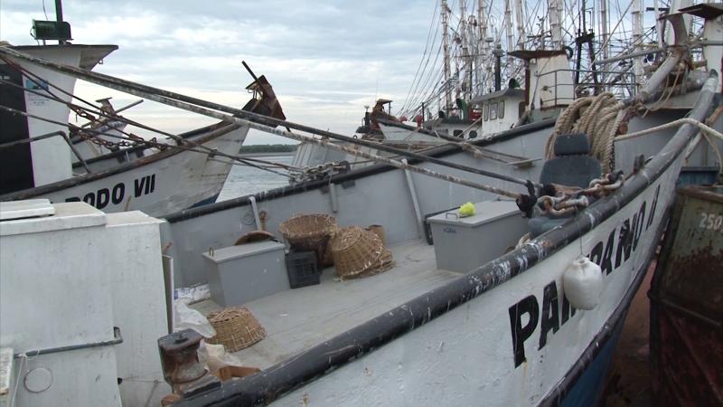 Crece el índice de desempleo en la pesca