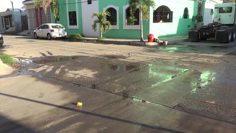 Llevan ocho meses con un fétido problema en la Jacarandas