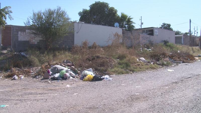 Llena de basura la calle Cruz Medina