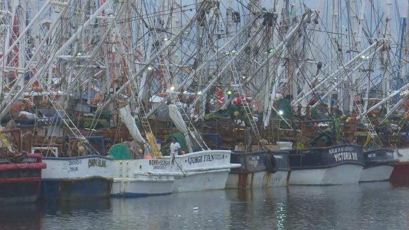 """El 80 por ciento de la flota camaronera ya se encuentra """"amarrada"""" en el puerto"""