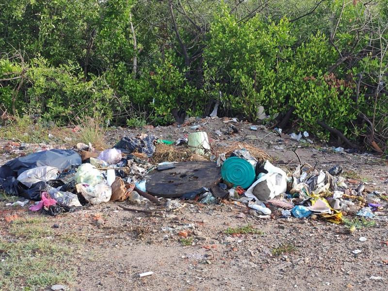 A tres días de limpiarse el Estero, nuevamente luce con basura
